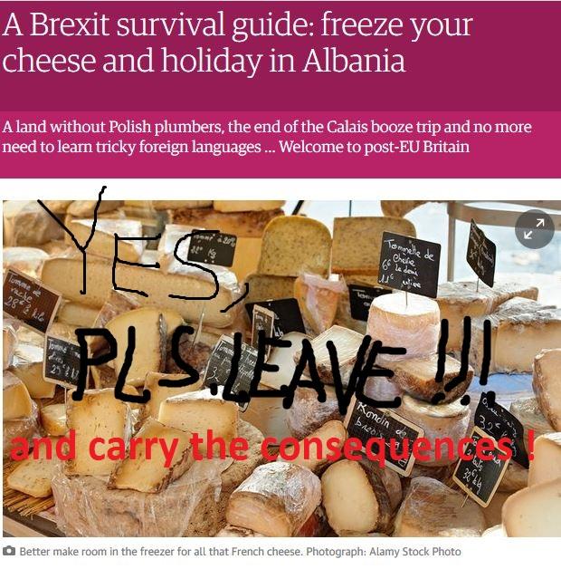 Brexit Survival Guide Leave